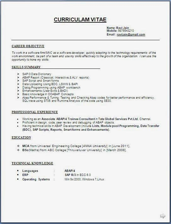 Download Resume Structure | haadyaooverbayresort.com