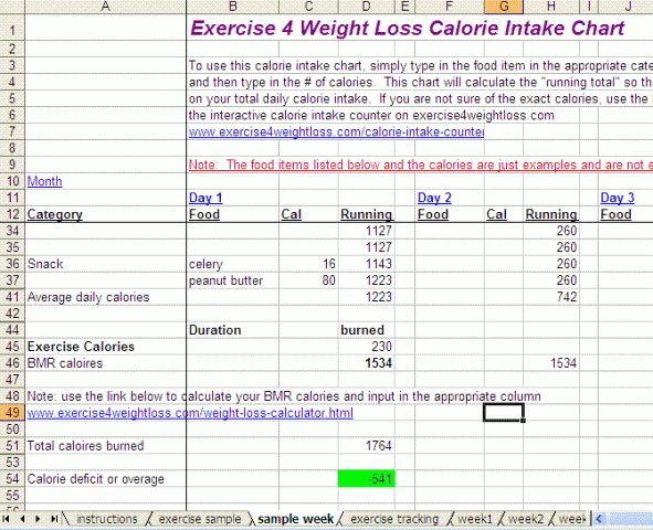 Calorie Intake Chart, Weight Loss Tracker and Exercise Tracker