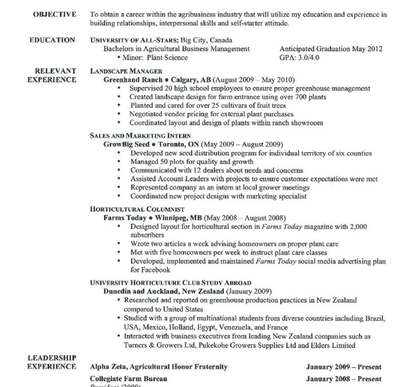 Startling Good Resume 14 Resume Examples A Good Job Sample How To ...