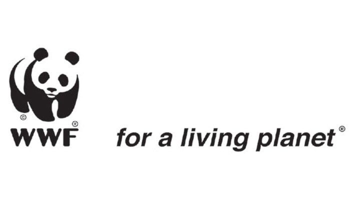 Wwf Needs A Project Accountant