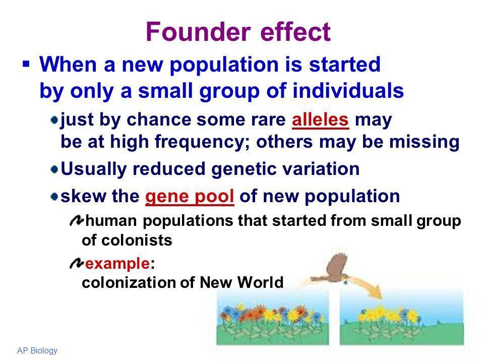 Mechanisms of Evolution - ppt video online download