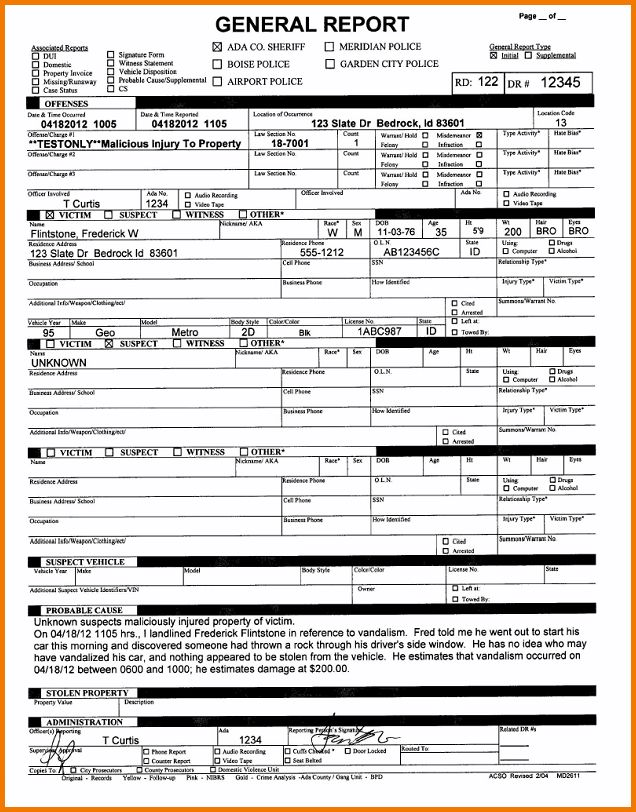 5+ Fake Police Report Template | Expense Report