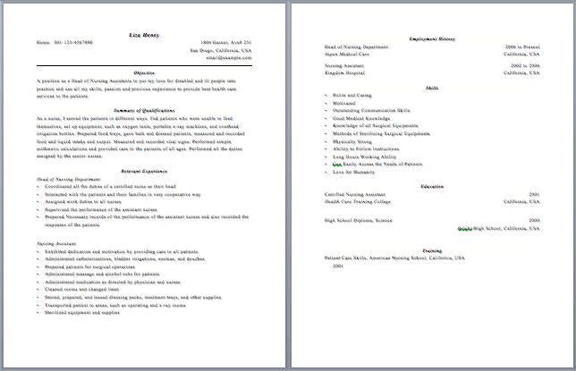 Sumptuous 2 Page Resume Format 13 Sample - CV Resume Ideas