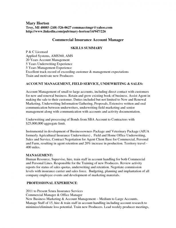 insurance underwriter resume underwriter resume example resume