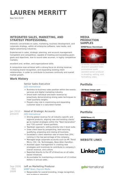 Senior Sales Executive Resume samples - VisualCV resume samples ...