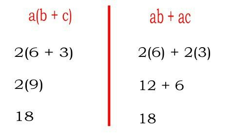 What is the Distributive Property, and what makes it so special?
