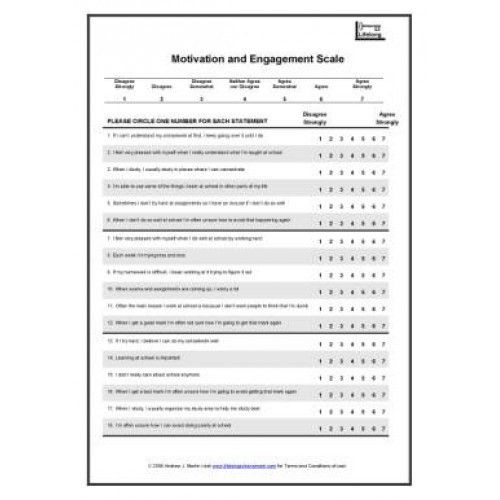 Motivation and Engagement Scale: HIGH SCHOOL Pack + Online Data ...