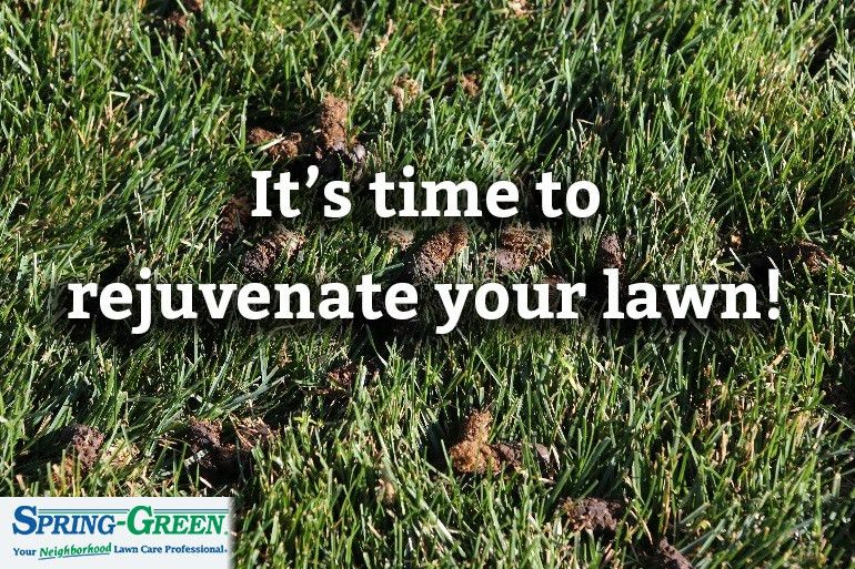 Rejuvenate Your Lawn with Core Aeration and Reseeding