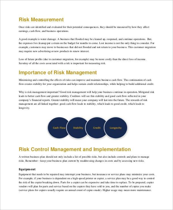 Sample Risk Management Plan - 8+ Examples in PDF