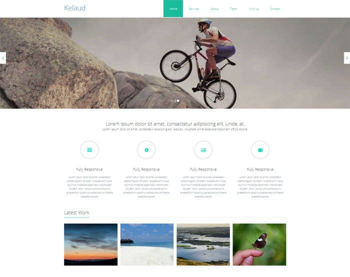 40+ Free HTML5 Templates Download in 2015 - CodexCoder