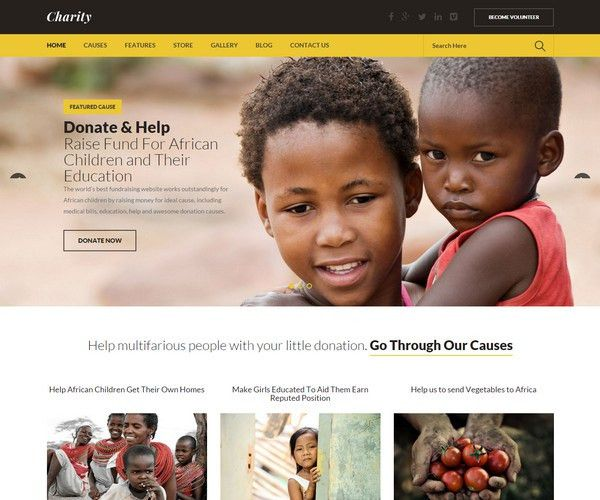 30+ Best Nonprofit/Charity Bootstrap Templates