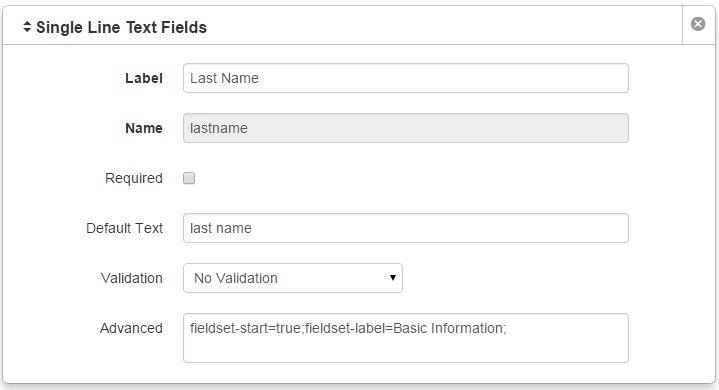 LDP Form Elements Advanced Field - Web & Digital Communications ...