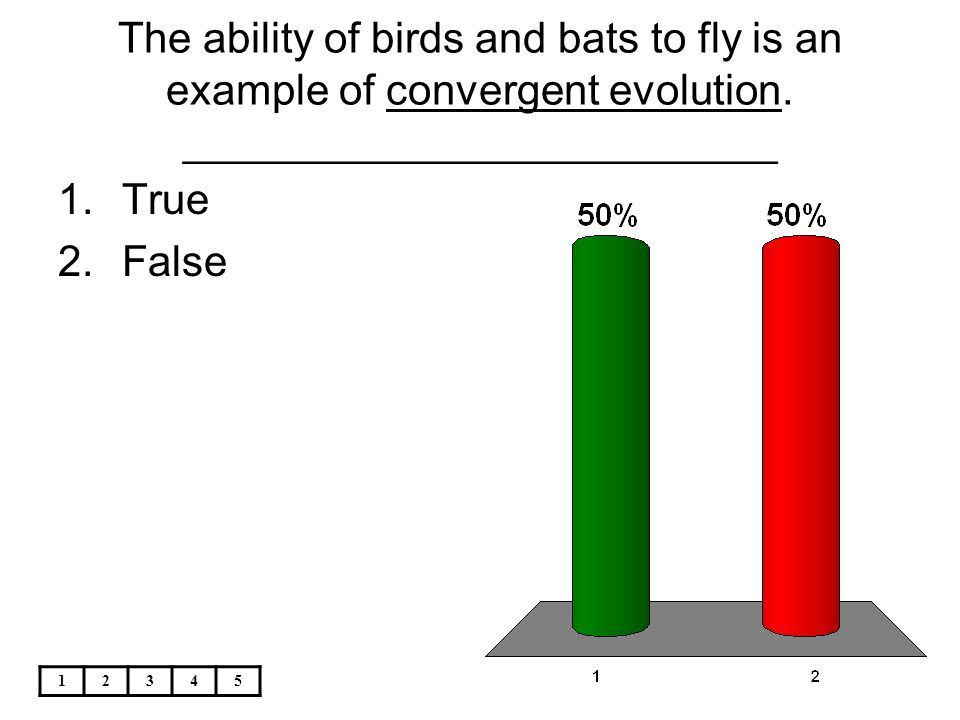 A cladogram shows that all chordates evolved from - ppt video ...