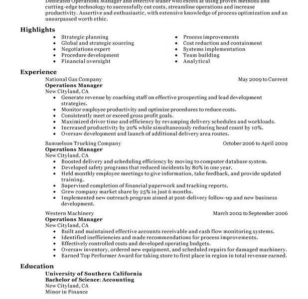 sample director of operations resumes
