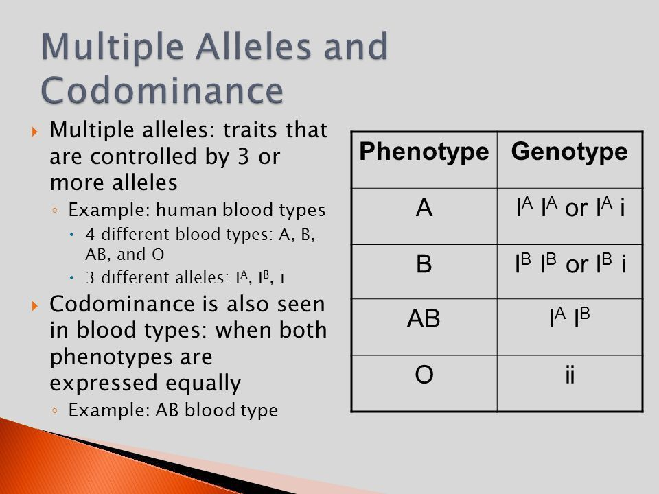Codominance, Multiple Alleles, Incomplete dominance, and Sex ...