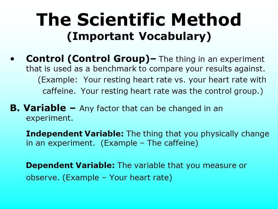 Introduction to Science - ppt video online download