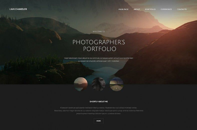 36+ Portfolio Website Themes & Templates | Free & Premium Templates