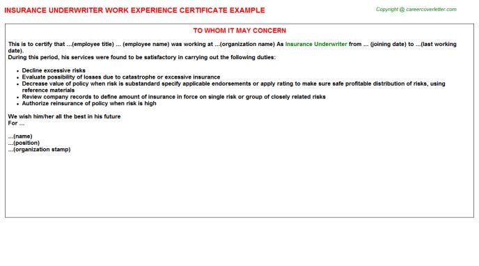 Insurance Underwriter Work Experience Certificate