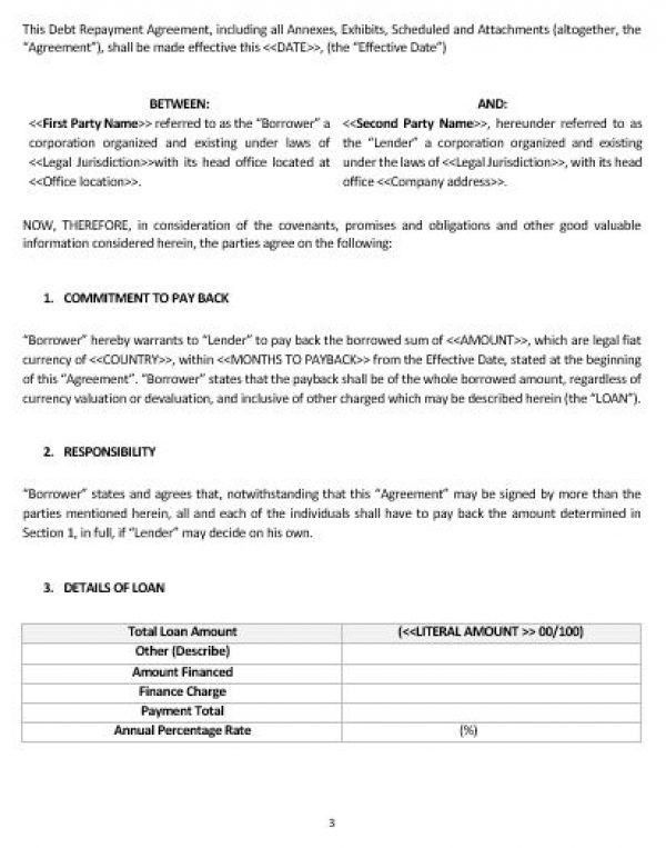 NE0204 DEBT REPAYMENT AGREEMENT TEMPLATE – ENGLISH – Namozaj