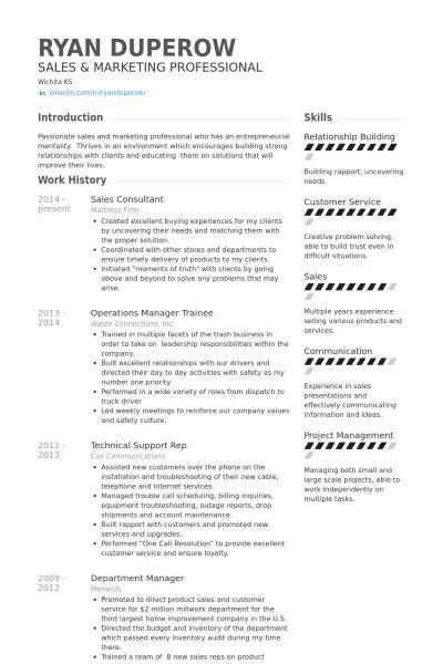 Sales Consultant Resume | berathen.Com