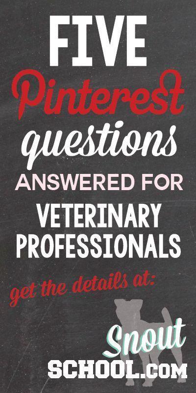 60 best Social Media for Veterinary Industry images on Pinterest ...