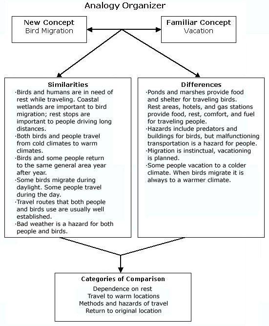 Migration Analogy - TeacherVision