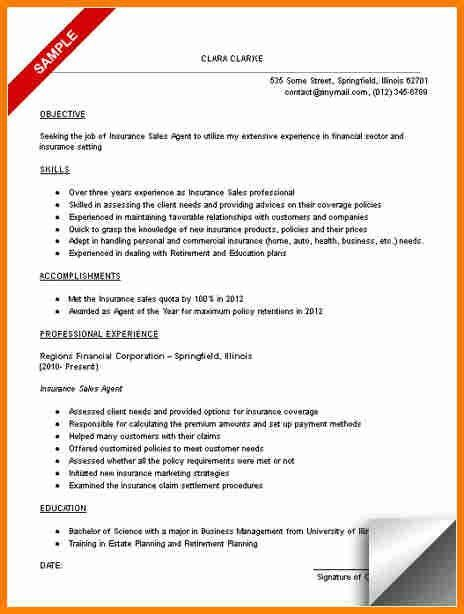 12+ insurance agent resume sample | budget template