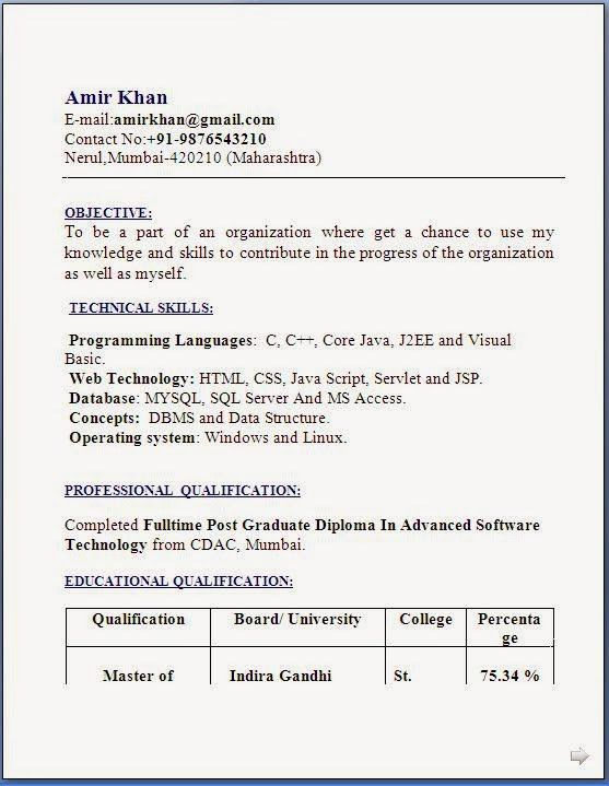 resume format for bca freshers professional curriculum vitae
