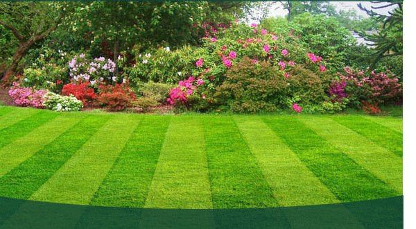 Lawn care services – commercial, residential | georgeslandscapemn.com