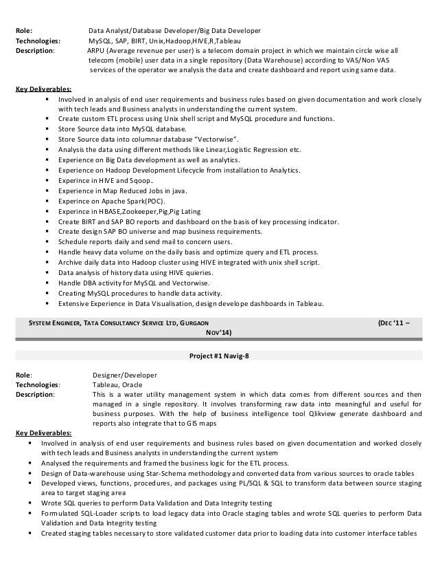 Download Big Data Resume | haadyaooverbayresort.com
