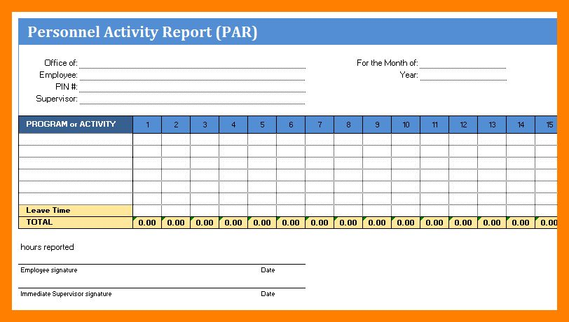 12+ activity report format | resume sections
