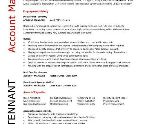 Account Manager Resume Template Account Manager Cv Template