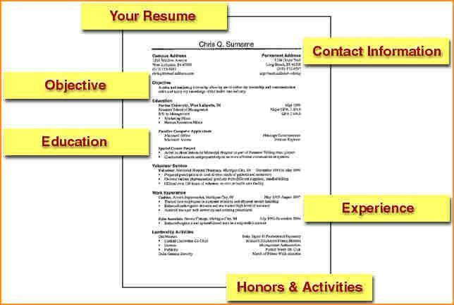 15+ how to write cv for job application - Basic Job Appication Letter