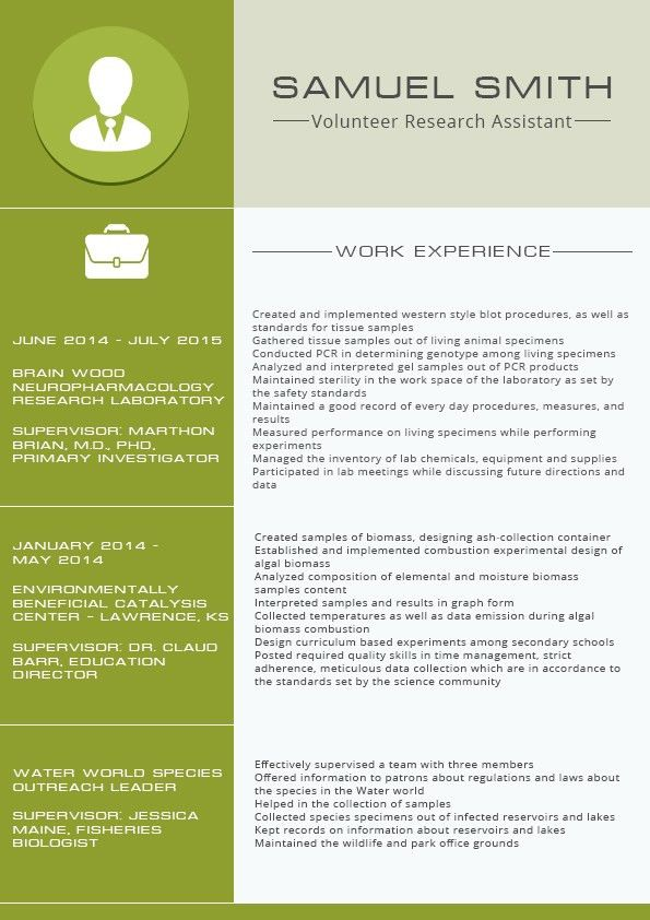 resume template outline format screenshot sample resume format ...