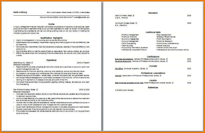 10+ financial consultant resume sample   Financial Statement Form