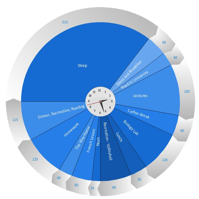 Schedule pie chart - Daily action plan | Example Of Activities In ...
