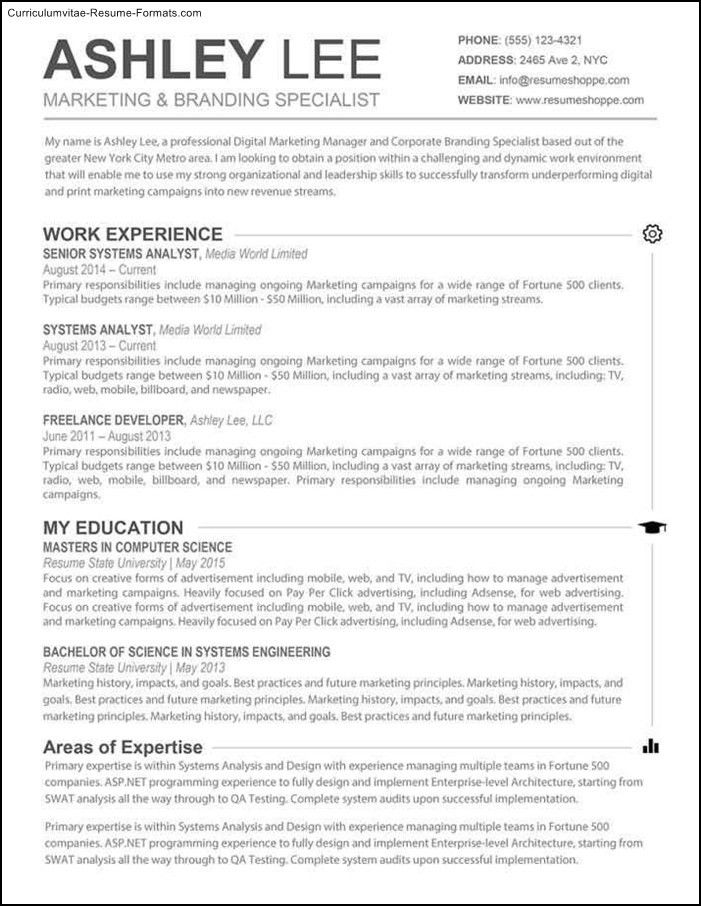 Resume Templates For Mac. Modern Resume Template - Cv Template For ...