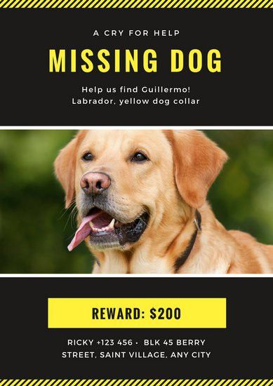 Charcoal and Yellow Missing Pet Poster - Templates by Canva