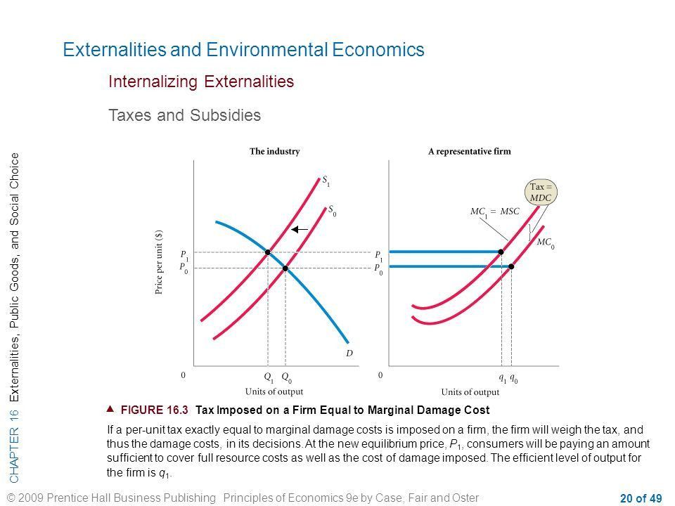 CHAPTER 16 Externalities, Public Goods, and Social Choice © 2009 ...