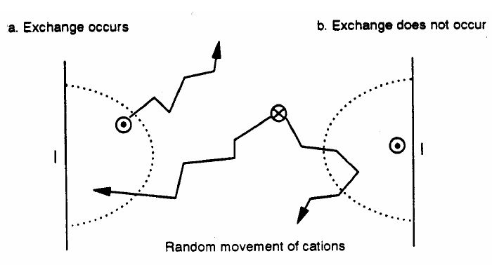 Example of cation exchange [12] | Figure 1 of 3