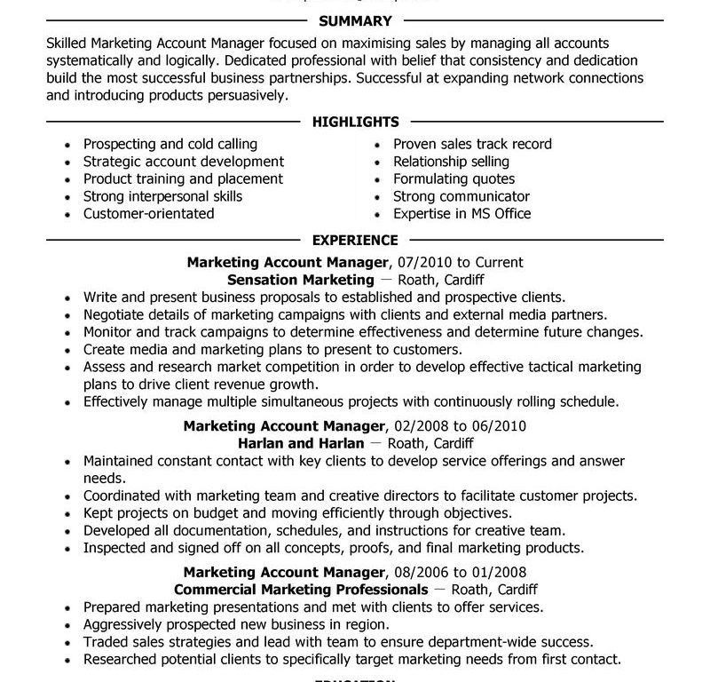 Stylist Design Account Manager Resume 3 Best Account Manager ...