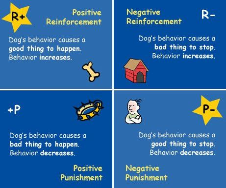 Fitness Through Operant Conditioning « EarthFit