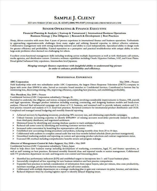 Finance Executive Resume Executive Resume Example Executive