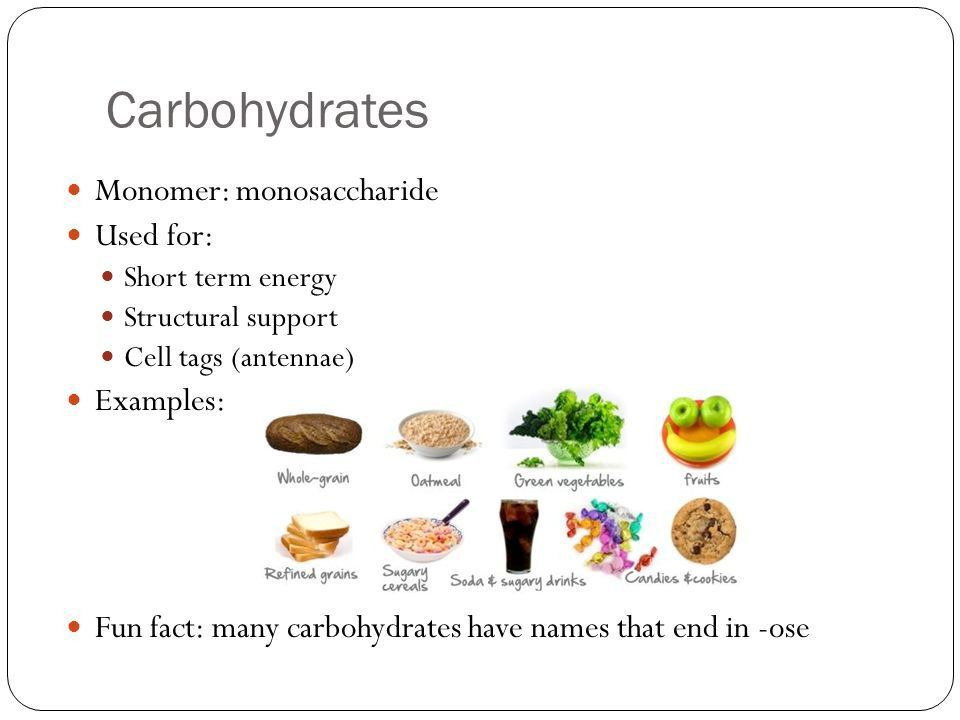 Carbohydrates Honors Biology. - ppt video online download