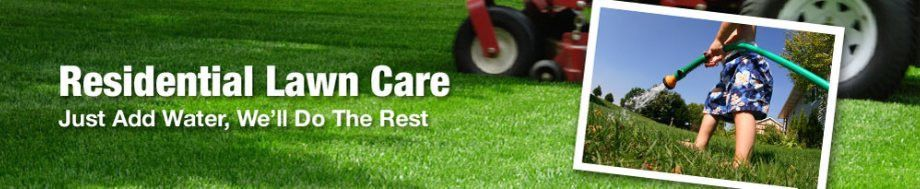 Washington DC Lawn Care | Washington D.C. Grass Cutting | DC ...