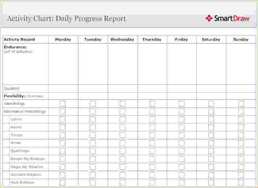 12+ daily progress reports | Pay Stub Template