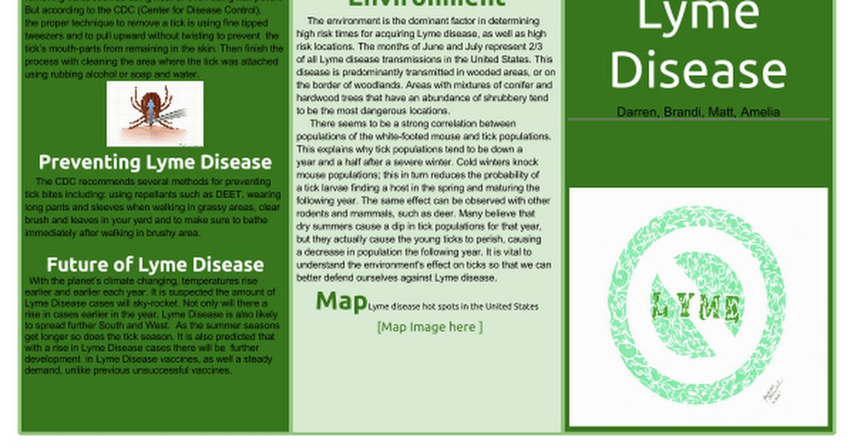 Brochure Template Google Docs | cyberuse
