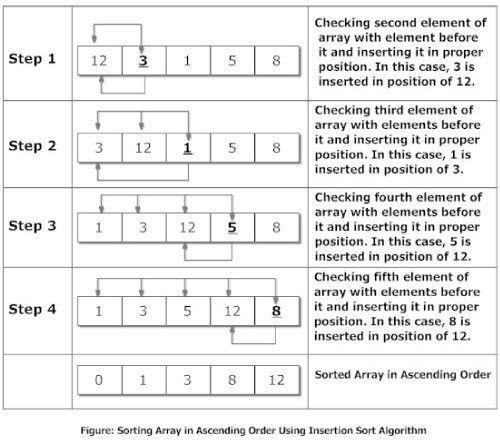 Insertion Sort Algorithm