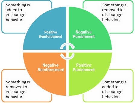 Operant Conditioning Cycle - DogTraining.World