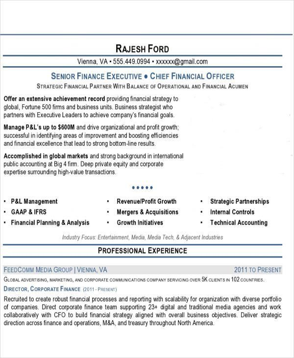 professional executive resume template 34 word pdf documents - Professional Executive Resume